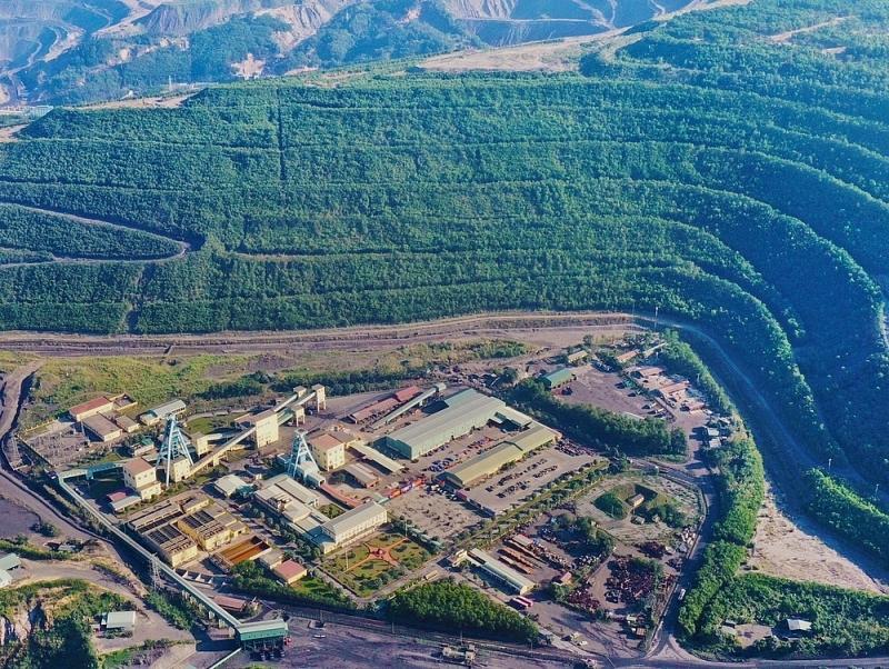 Bãi thải Chính Bắc Núi Béo sau phục hồi môi trường, tái sinh rừng.