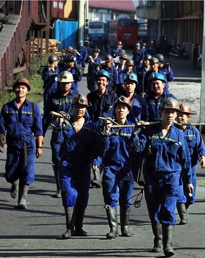 Công ty Than Thống Nhất - TKV triển khai thực hiện công tác an toàn - vệ sinh lao động năm 2021